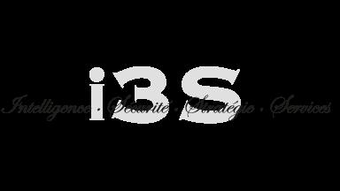 I3S consultants
